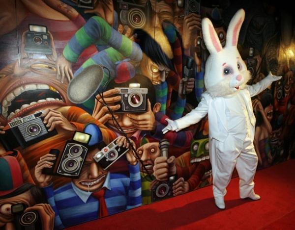 BS rabbit